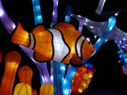 Illuminasia Fish