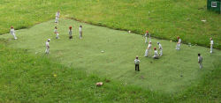 Model Cricket Match on the Village Green