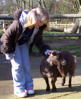 Katie meets a goat at the zoo